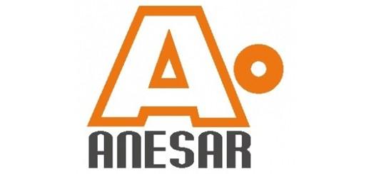 ANESAR-520x245