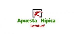 Lototurf-520x245