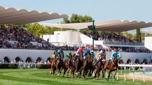 Hipodromo Zarzuela caballos curva