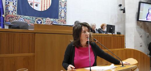 Sesión plenaria de las Cortes de Aragón