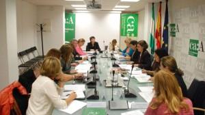 Consejo Audio Andalucia